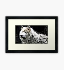 Wilde nature - white wolf Framed Print