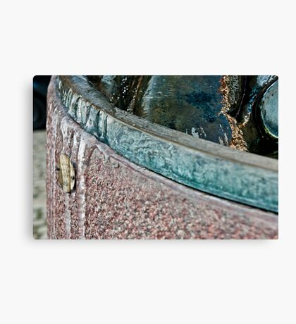 Frozen Bath Water Canvas Print