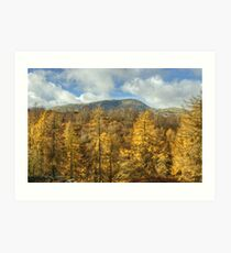 The Wetherlam Series ~ Autumn Gold Art Print