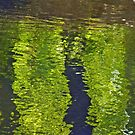 abstract water reflections by Bine