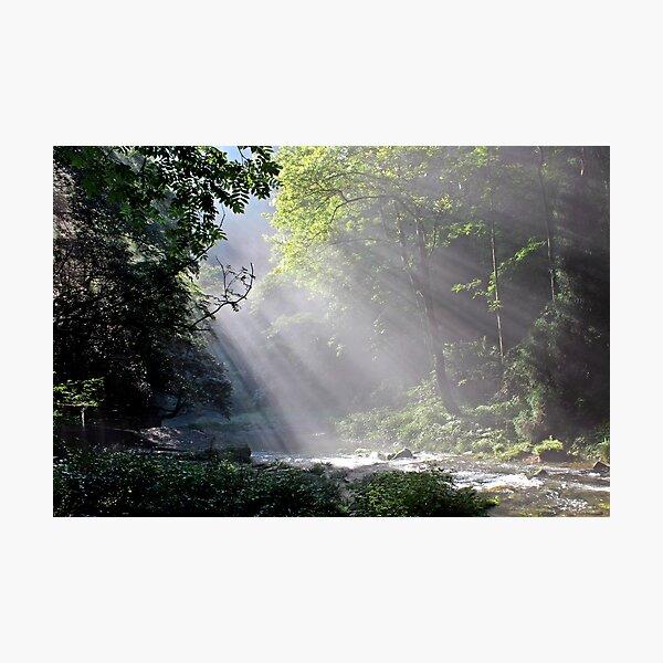 Morning, Wulingyuan National Park, Hunan Photographic Print