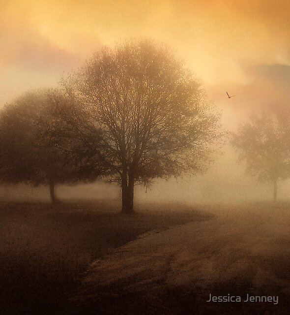 Undiscovered by Jessica Jenney