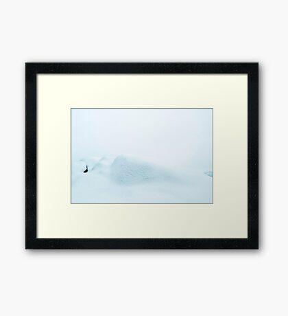 Snø Framed Print