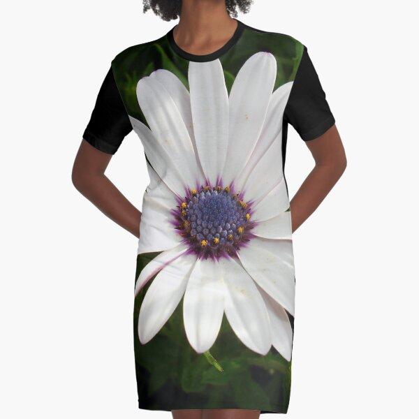 Beautiful Osteospermum White Daisy With Purple Center  Graphic T-Shirt Dress