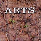 Arts by NuclearJawa