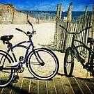 Two Bicycles  by Debra Fedchin