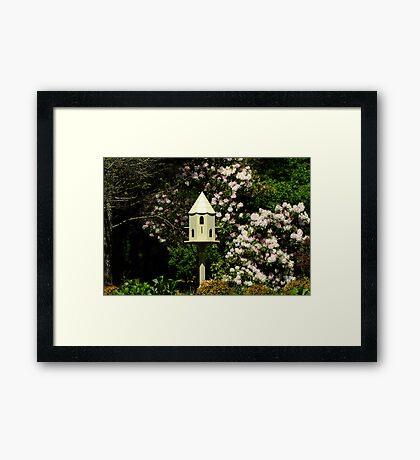 Bebeah Garden, Mt Wilson Framed Print
