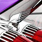 Cadillac Fins Wall Art by HoskingInd