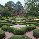 Beautiful gardens by Penny Fawver