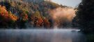 Misty Panorama by Carolyn  Fletcher