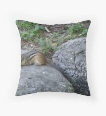 Chipmunk Visit Throw Pillow