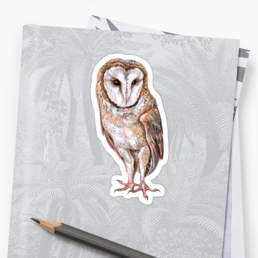Barn owl drawing Sticker