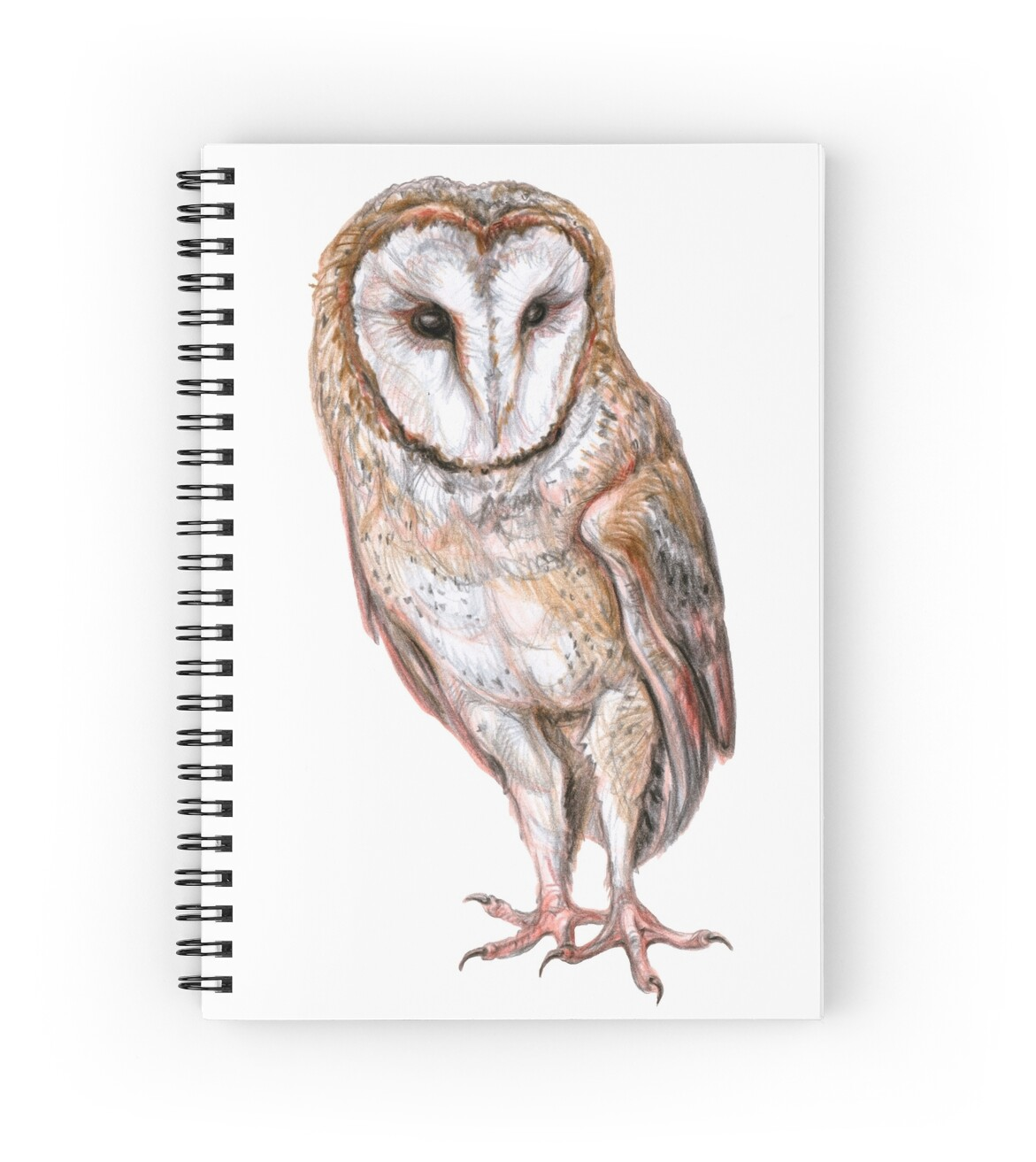 Quot Barn Owl Drawing Quot Spiral Notebooks By Stasia Ch Redbubble