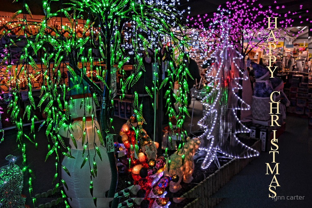The Magic Of Light by lynn carter