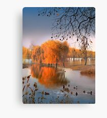 Flooded Willows Canvas Print