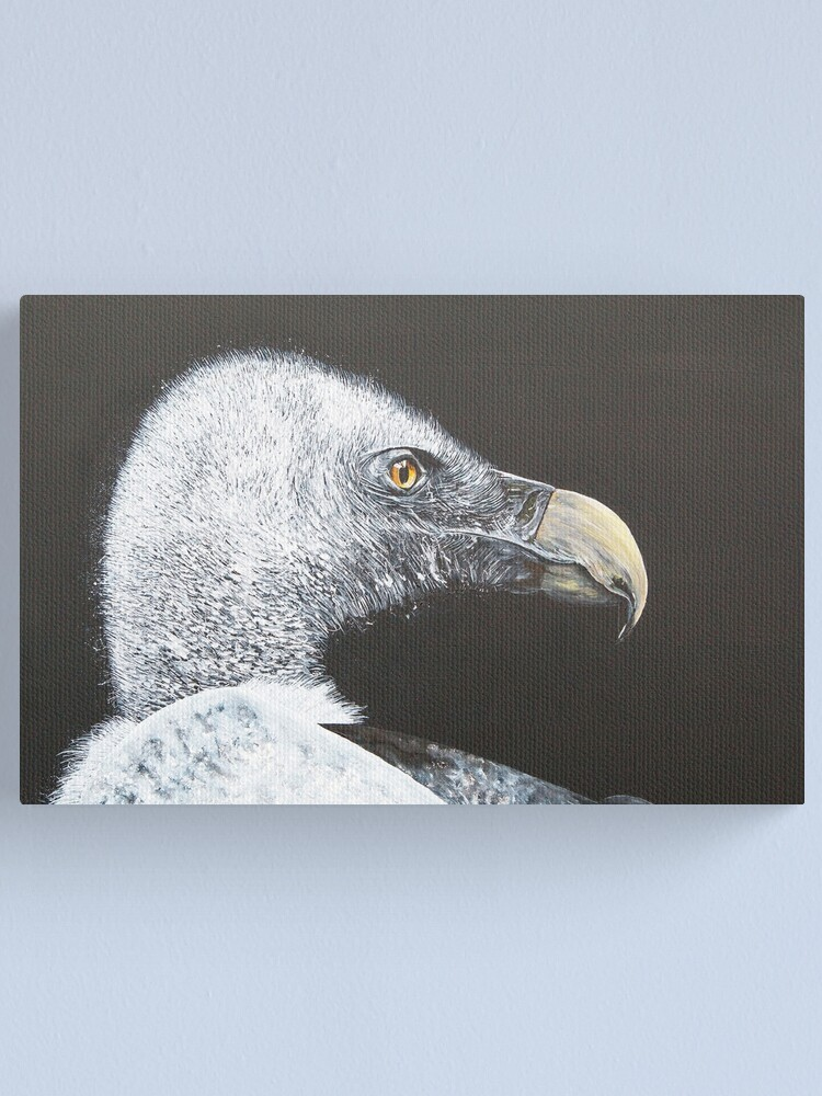 Alternate view of Vulture Canvas Print