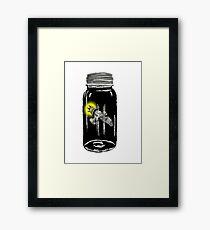 Unusual Firefly Framed Print