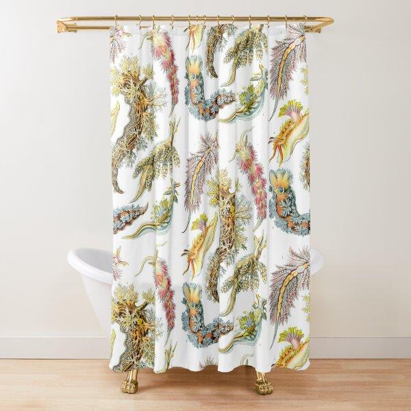 Ernst Heinrich Philipp August Haeckel Shower Curtain