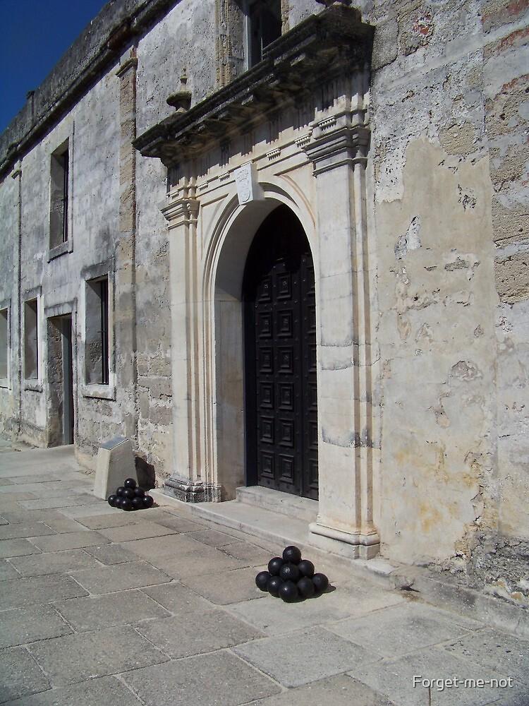 Door of Castillo De San Marcos by Forget-me-not