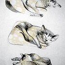 three ways to sleep by ecrimaga