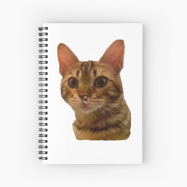 Haz tu día más feliz Cuaderno de espiral