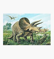 Triceratops Photographic Print