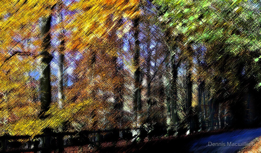 Autumn through a Distorting lens (3) by dmacwill