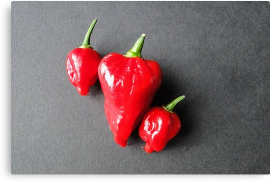 Seriously Hot Stuff by Barrie Woodward