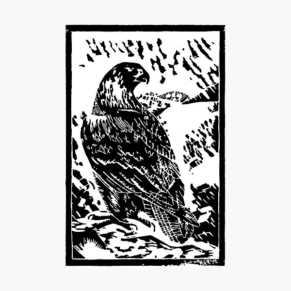 Eagle Design Taken From A Wood Block Print. Photographic Print