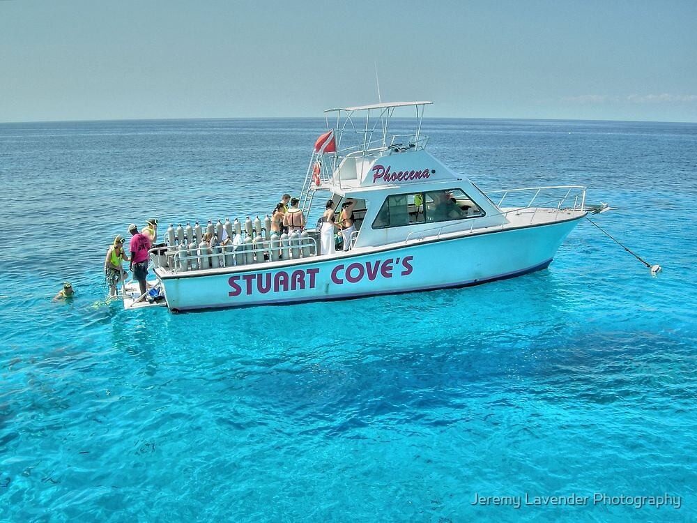 Diving Offshore of New Providence Island in The Bahamas by Jeremy Lavender Photography