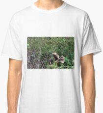 Hawk on the hunt Classic T-Shirt