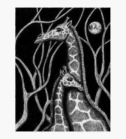 Giraffe colored pencils drawing Photographic Print