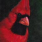 Mr Red Cardinal by Charlotte Yealey