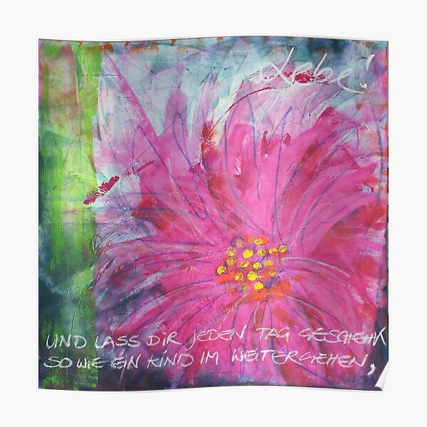 Frühlingserwachen: »pink daisy« Poster