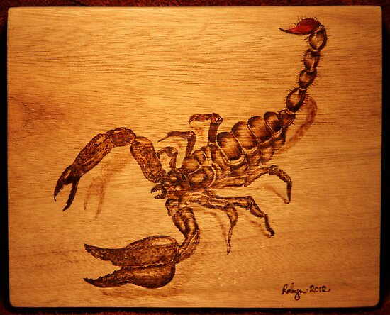 PYROGRAPHY: Scorpion by aussiebushstick