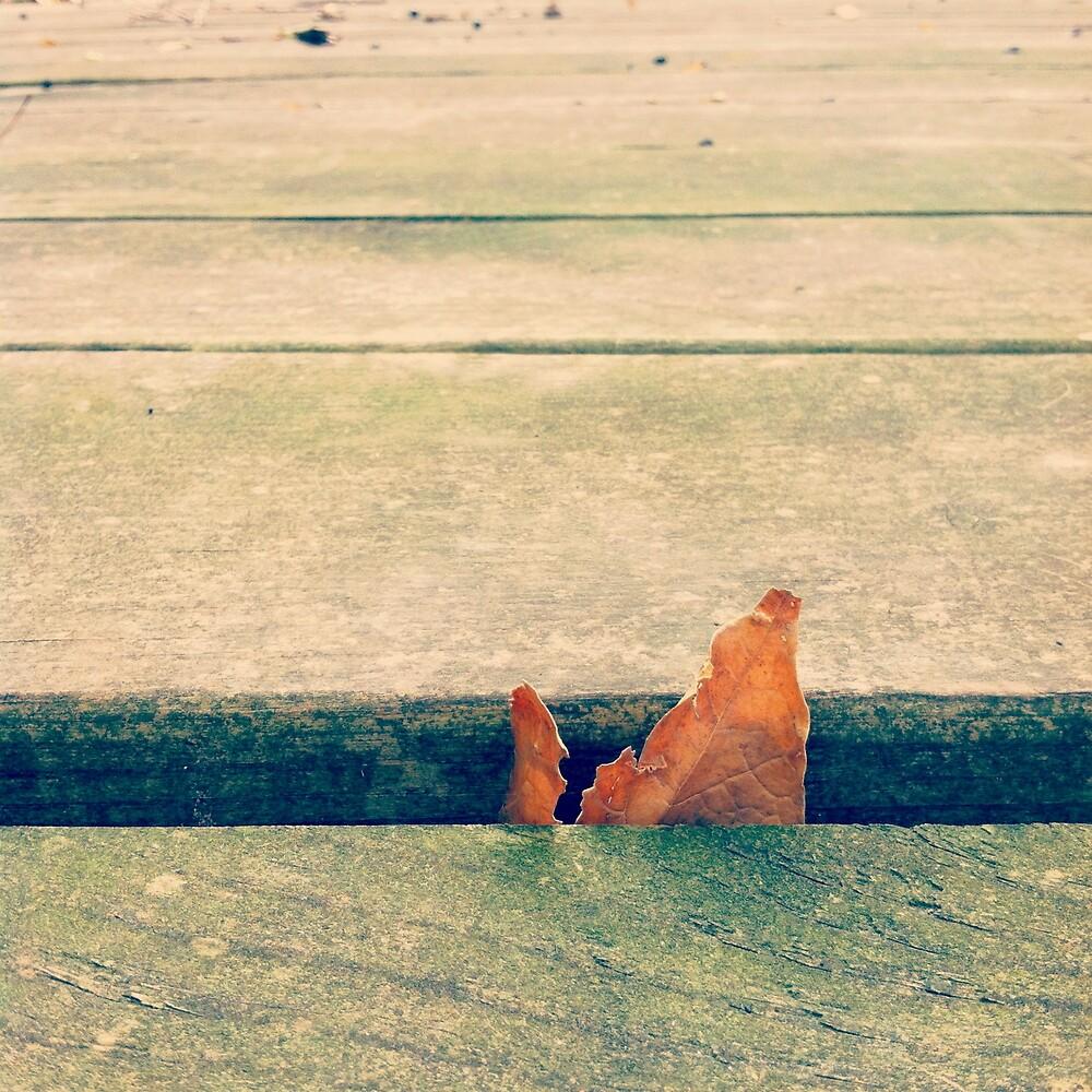 Lone Leaf by Josrick