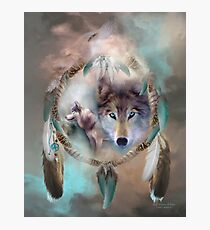 Wolf - Dreams Of Peace Photographic Print