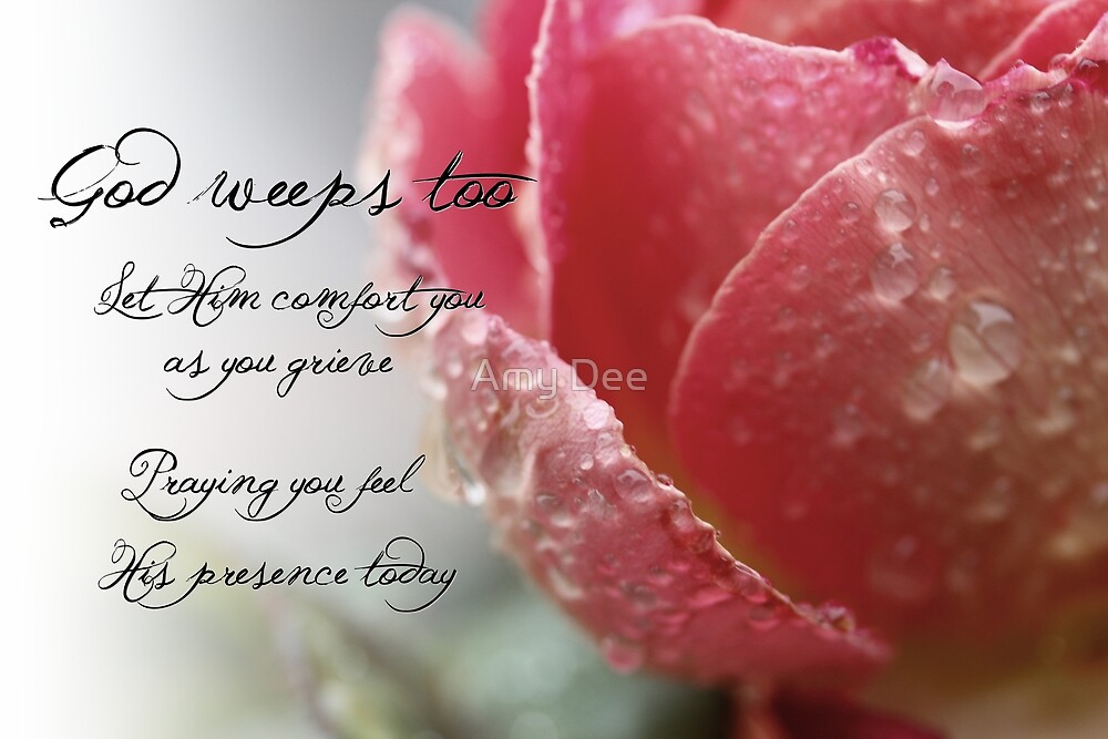God Weeps Too by Amy Dee