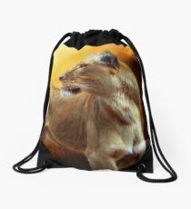 Lioness Is Near 1 Drawstring Bag