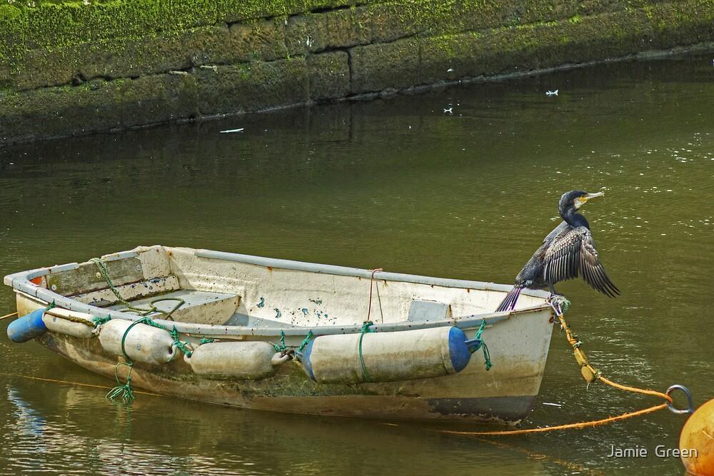 Captain Birdseye by Jamie  Green