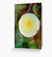 Mushroom Sun Greeting Card