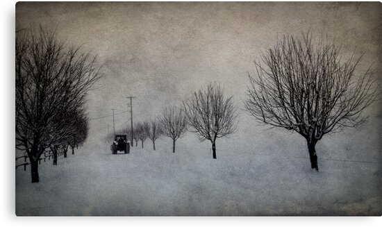 Winter's Work by Annie Lemay  Photography