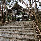 Japan 05 by Adrian Rachele