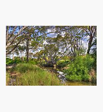 Yass River  Rural  NSW Photographic Print