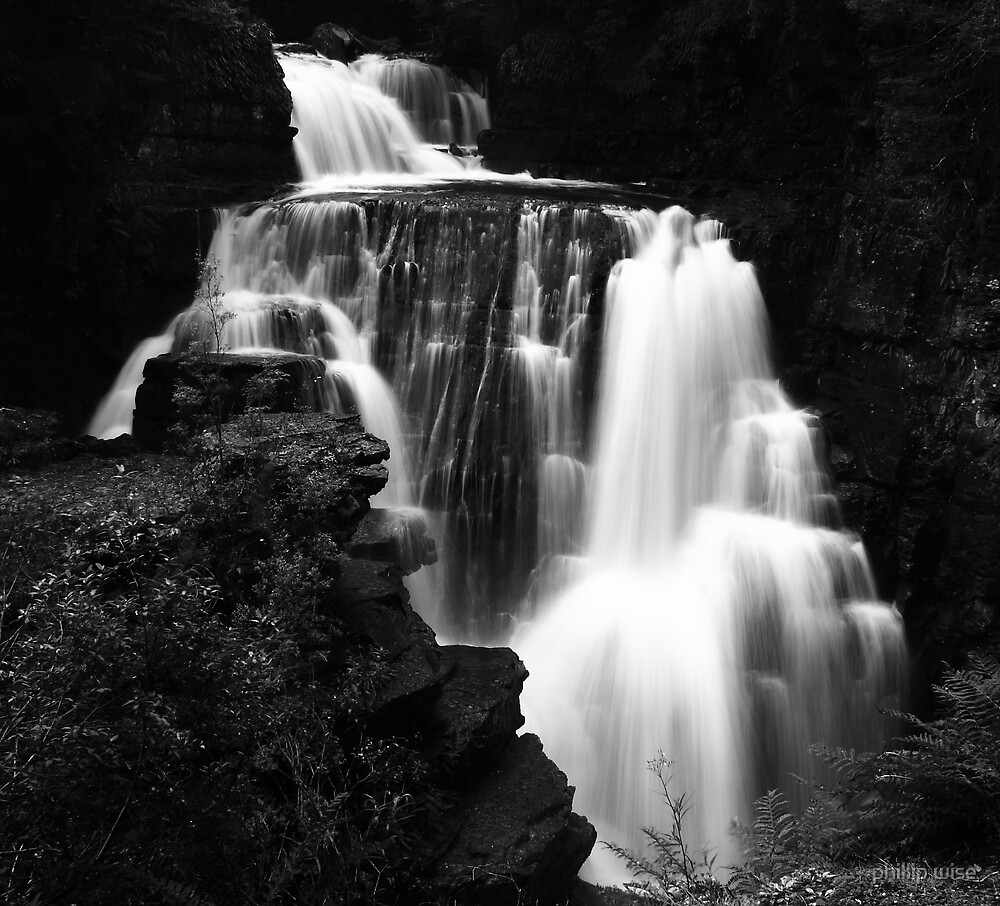Dalton Falls on the Overland Track , Tasmania , Australia by phillip wise