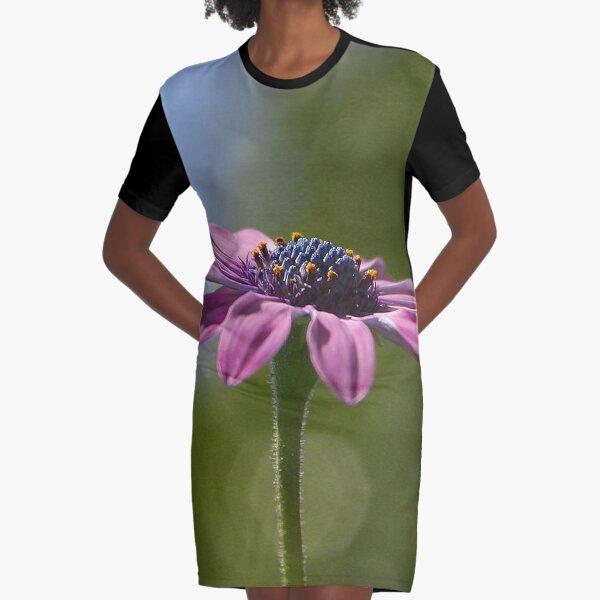 Macro Shot Of A Purple Osteospermum  Graphic T-Shirt Dress