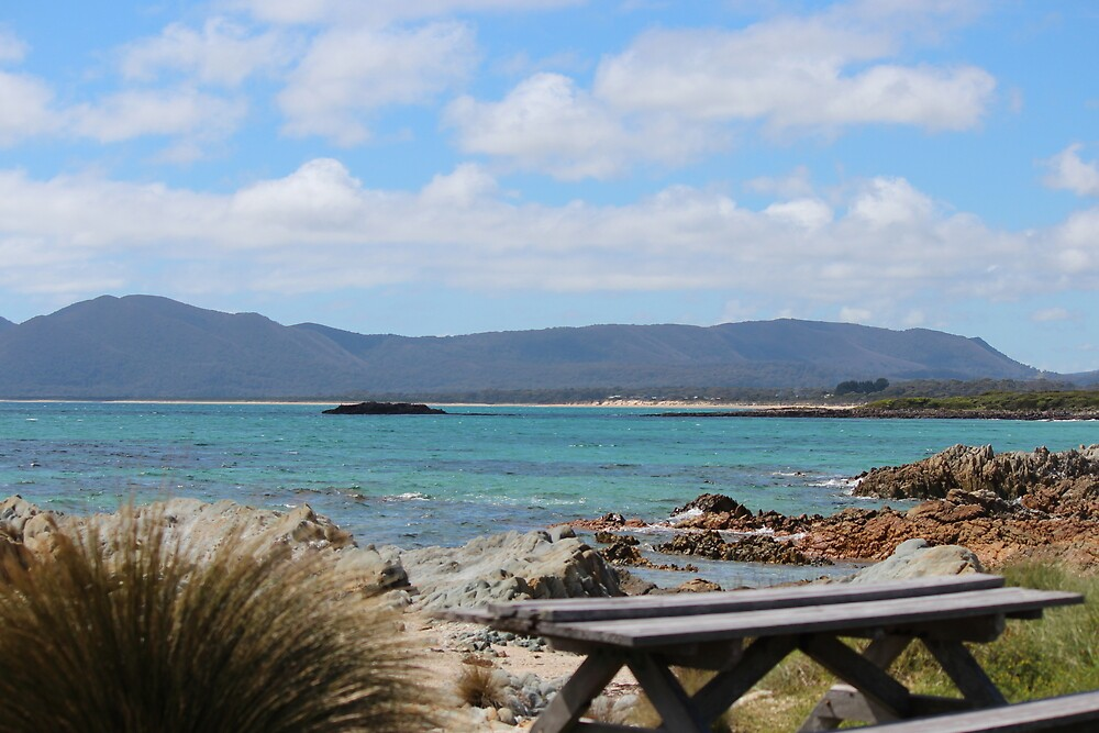 Edgcumbe Beach - n.w. Tasmania by gaylene