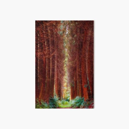 The Pines Art Board Print