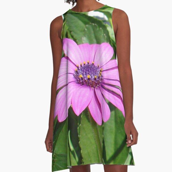 Purple Osteospermum Against Green Leaves A-Line Dress