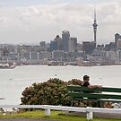 Auckland view by Roberto Bettacchi